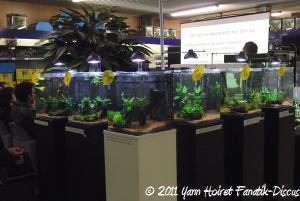 Nano aquariums