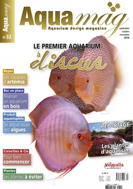 aquamag-32-article-plantes-d-aquarium-yann-hoiret