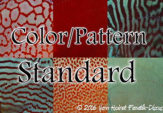 color-pattern-standard des discus