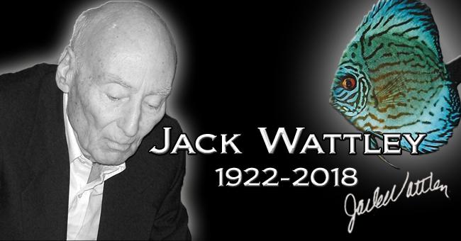 Hommage à Jack Wattley