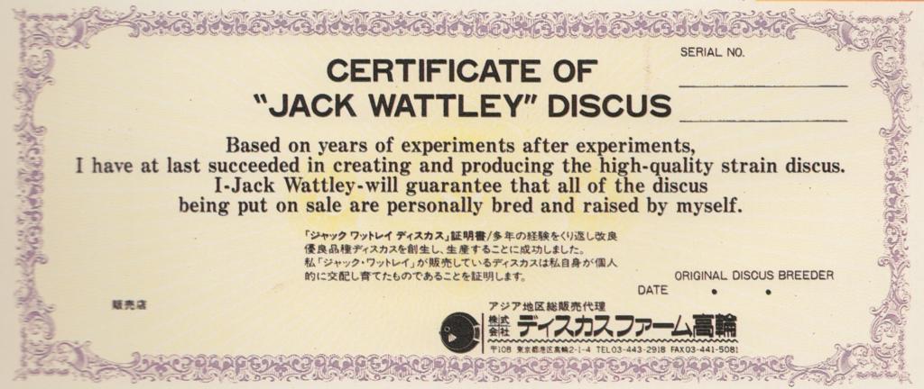 Jack Wattley Discus certificate