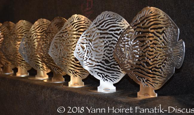 Nordic Discus Show 2018 trophées