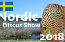 image a la une Nordic Discus Show 2018